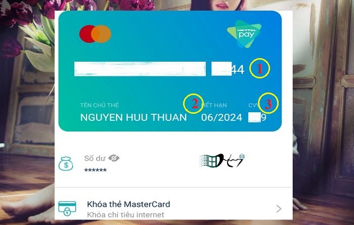 Cách liên kết thẻ MasterCard ảo Viettel trên tài khoản Paypal 2
