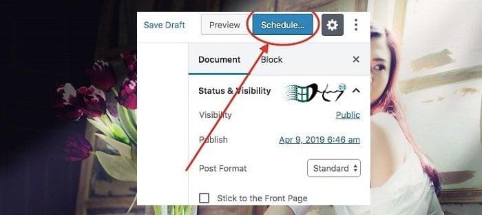 Cách đặt lịch tự động đăng bài viết trong Wordpress 6