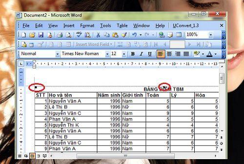copy-du-lieu-tu-Excel-sang-Word-giu-nguyen-dinh-dang-5 1