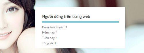 dem-so-nguoi-online-5 1