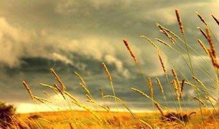Lời hứa phảng phất mùi hương của gió heo may