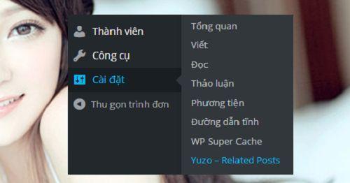 tao-bai-viet-lien-quan-wordpress-1 1