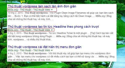 tao-duong-dan-than-thien-wordpress-it60s