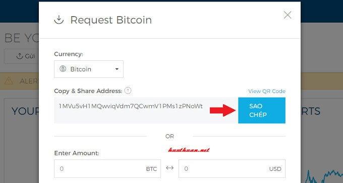 Cách tạo địa chỉ ví Bitcoin, Ethereum và Bitcoin cash để giao dịch tiền ảo? 6