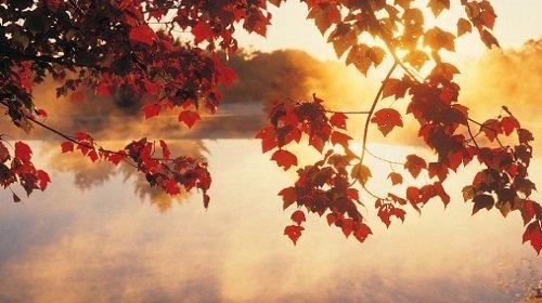 Thơ tình yêu: Tháng tám nơi đây và anh