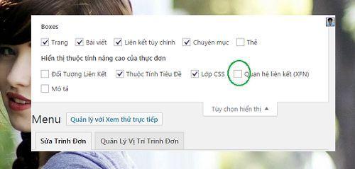 them-thuoc-tinh-nofollow-cho-menu-wordpress-1-1