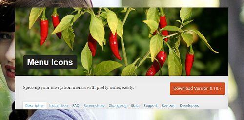 tích hợp icon vào Menu WordPress chuyên nghiệp