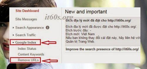 Cách loại bỏ liên kết bài viết đã xóa khỏi bộ máy tìm kiếm 2